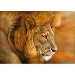 Beck: Lion du Serengeti