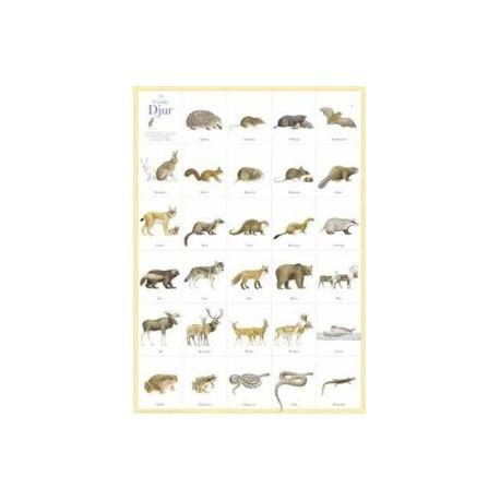 29 st svenska djur tecknade av Lars Klinting. 50×70cm